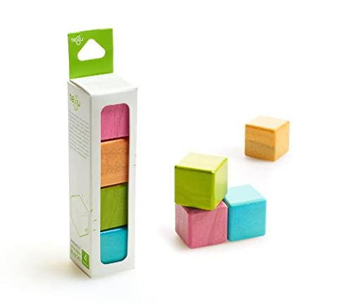 4 Piece Tegu Magnetic Wooden Block Cube