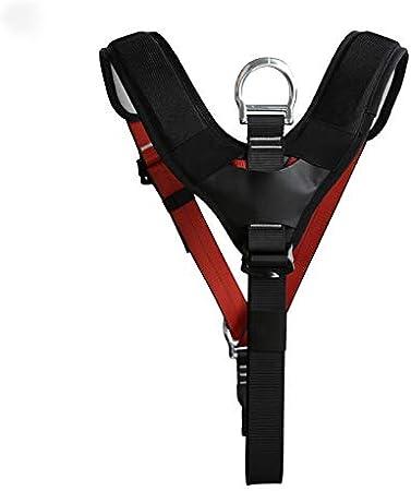Safey Belt Cinturón de sujeción de Seguridad para el Pecho ...