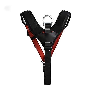 Safey Belt Cinturón de sujeción de Seguridad para el Pecho del ...