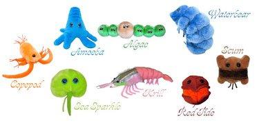 Set of 9 Aquatic Giantmicrobes