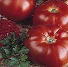Super Beefsteak (Heirloom) Tomato 200 Seeds By Jays Seeds Upc 643451294613