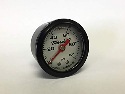 (Marshall Instruments LSB00100 Liquid Filled Pressure)
