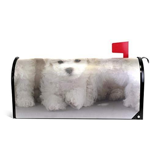 Mailboxcoverfhiw Mailbox Covers Magnetic Bichon Frise Dog Standard Size 6.5 x 19 Inch