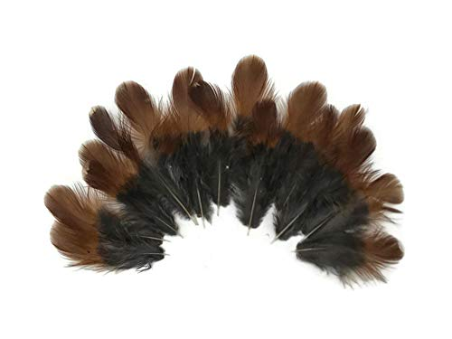 Moonlight Feather | 10 Pieces - Natural Red and Black Partridge Plumage Feathers Fly Tying Wedding Costume Craft -