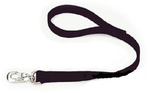 Coastal Pet Double-Ply Nylon Traffic Leash 1