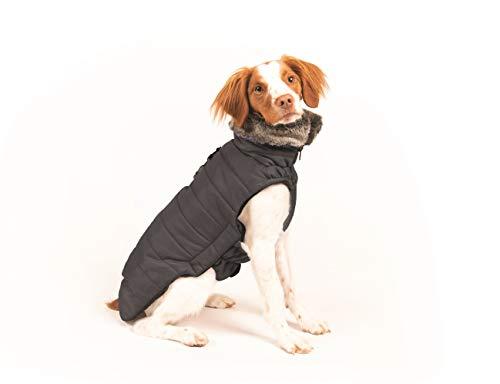 Dog Gone Smart Hemlock Puffy Dog Jacket, Black Nebula, 10