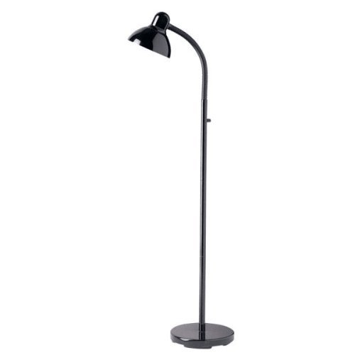 Dainolite Lighting DM238-F-BK Modern 1-Light Floor Lamp, Black