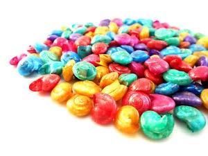 (KARPP 1 Lb Dyed Umbonium Mini Shells (1/2