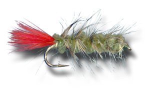 Woolly Worm - Olive Fly Fishing Fly - Size 12 - 6 Pack