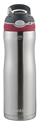 Contigo Autospout Straw Ashland Chill Stainless Steel Water Bottle  20Oz  Sangria