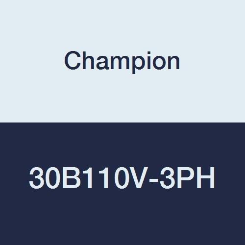 Champion 30B110V-3PH Commandair Series 1 hp Splash Lubric...