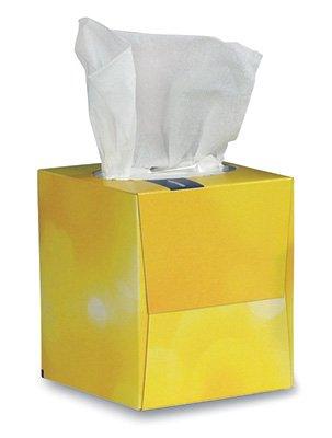 Brighton Professional Facial Tissue - Cube Box (2-Ply) (6 Boxes) - AB-310-1-12