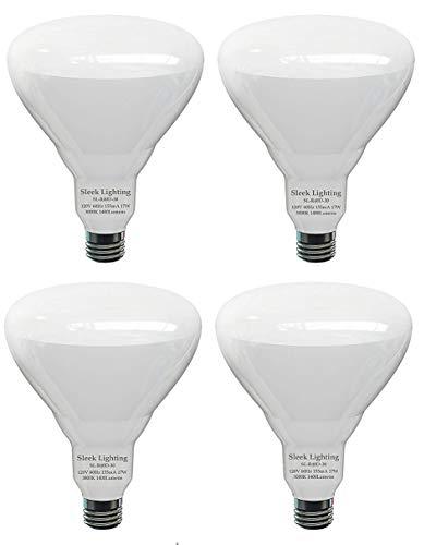 Flood Light Bulb Disposal in US - 3