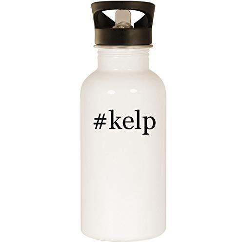 #kelp - Stainless Steel Hashtag 20oz Road Ready Water Bottle, White