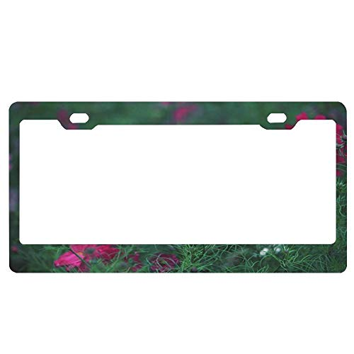 (huizehonghong Beautiful Meadow Flowers Personalized Frames,Floral License Plate Frame,Novelty License Plate Cover,Metal Car Tag Frame Holder,2 Holes and Screws)