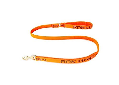 ROK Strap Leash with Solid Brass Hook for Pets, Small, orange Black
