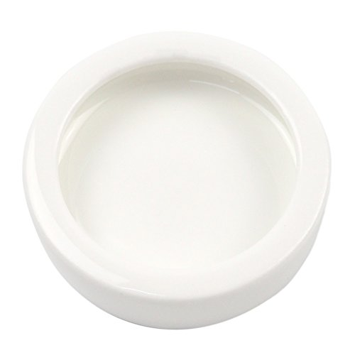 - OMEM Worm Dish Mini Reptile Food Bowl Ceramics Made (S)