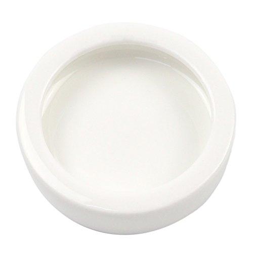 OMEM Worm Dish Mini Reptile Food Bowl Ceramics Made (S)