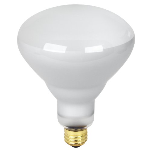 65 Watt Cfl Flood Light