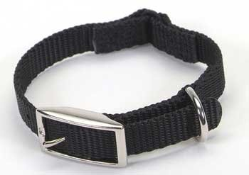 Coastal Pet Sassy Nylon Cat Safety Collar (Black, 10 Inch L x 3/8 Inch W)