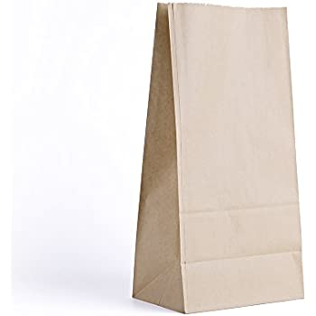 Brown Paper Lunch Bag Stock Photo 10658174