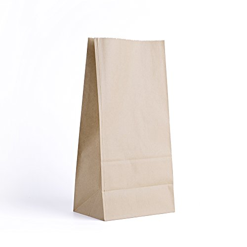 Halulu Brown Paper Lunch Bags - 5