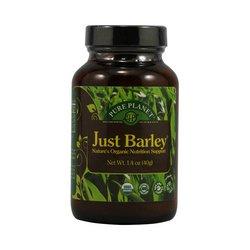 40 grammes de poudre Kamut verte orge juste jus vert bio