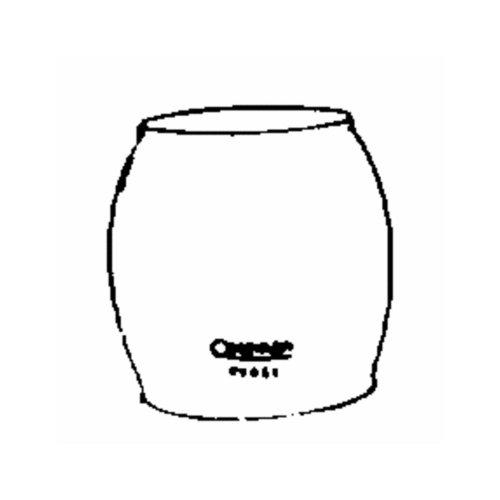 Coleman R690B051 Glass Lantern Globe