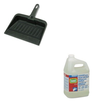 KITPAG02291RCP2005CHA - Value Kit - Procter amp; Gamble Professional Cleaner w/Bleach (PAG02291) and Rubbermaid-Chrome Heavy Duty Dust Pan (RCP2005CHA)