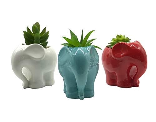 3 PCS Set Cute Cartoon Animal Elephant Shaped Ceramic Succulent Cactus Vase Flower Pot (Plant Not Included)