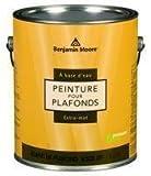 Benjamin Moore Ultra Premium Waterborne Ceiling Paint (Flat White)