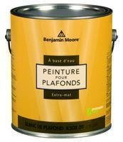 Benjamin Moore Ultra Premium Waterborne Ceiling Paint (Flat White) -