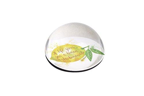 Forever Crystal Magnet - Forever Lemons