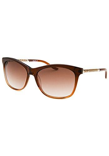 Amazon.com: Just Cavalli Mujer jc629s acetato anteojos de ...