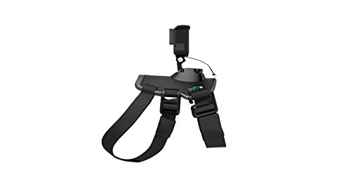 GoPro Fetch (Dog Harness)(GoPro Official Mount) (Best Harness For Weimaraner)