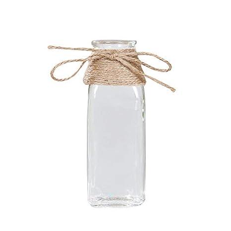 GoodFaith Jarrón de Cristal para decoración de Mesa de salón nórdica, hidroponía de Agua Transparente