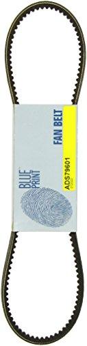 Blue Print ADS79601 ALTERNATOR BELT: