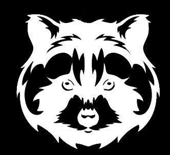 LLI Cute Raccoon | Decal Vinyl Sticker | Cars Trucks Vans Walls Laptop | White | 5.5 x 5.2 in | LLI1267]()