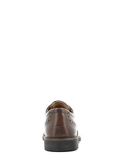 Igi&Co 4715 Francesina Uomo nd 40