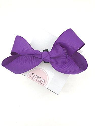 Posh Pet Boutique - Purple Bow