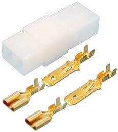 Conjunto Caja de conexión polarizada + terminales faston Macho y Hembra: Amazon.es: Electrónica