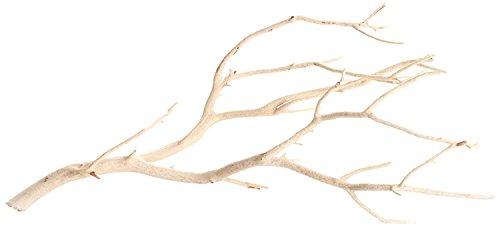 Koyal Wholesale Real Manzanita Branches, 24-Inch, Sandblasted
