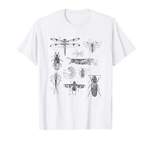 Entomology Bug Shirt - Funny Gift for Bug Lovers