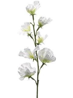 Amazon floristrywarehouse artificial silk sweetpea pink lilac allstate sweet pea silk flower spray in cream 22 tall mightylinksfo