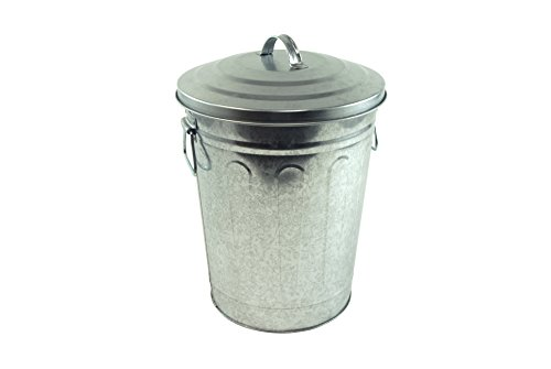 Steven Raichlen Best of Barbecue Galvanized Charcoal and Ash Can with Lid -- SR8012 (With Tin Lid Bucket)