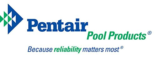 Pentair R121026 119 Blue Molded Frame Hand Skimmer with Reinforced Aluminum Handle by Pentair (Image #3)