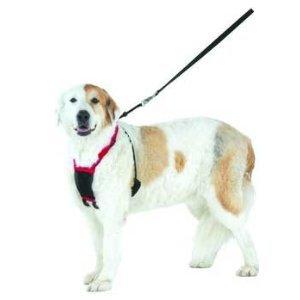 dog mesh harness large - 6