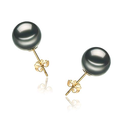 Black 9-10mm AA Quality Tahitian Cultured Pearl Earring Pair For Women - 14K Yellow Gold Post