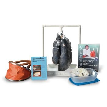 BioQuest Simulated Smoker's Lung Kit