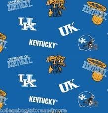 Kentucky Wildcats Fabric - University of Kentucky Wildcats Cotton Fabric, Blue & White - Sold By the Yard